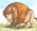 Bismark Buffalo