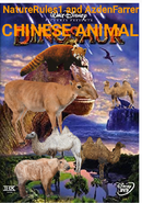 CNESEA Poster