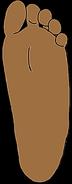 Catherine's Feet
