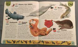 Endangered Animals Dictionary (5).jpeg