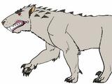 Indotherium