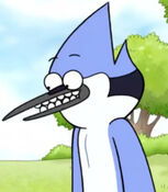 Mordecai in the Shorts