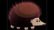 Safari Island Hedgehog
