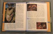Scholastic Encyclopedia Of Animals (49)