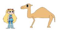 Star Meets Dromedary Camel