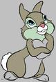 Thumper-rabbit