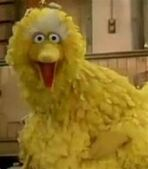 Big Bird in The Muppet Show