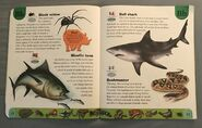 Deadly Creatures Dictionary (3)