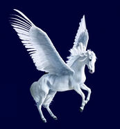 Pegasus (Mythical Creature)