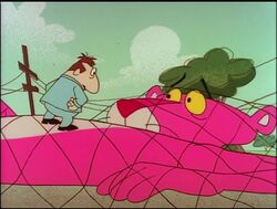 Pink panther trapped in the net 3.jpg