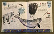 Polar Animals Dictionary (16)