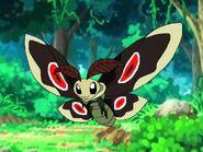 Rileys Adventures Emperor Speckled Moth