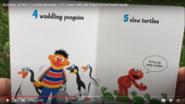 Sesame Street Penguins Turtles and Tortoises