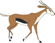 Timmy the Thomson's Gazelle