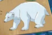 Totally Spies Polar Bear