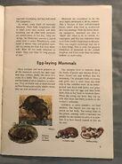 A Golden Exploring Earth Book of Animals (1)