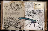 Dossier Dragonfly