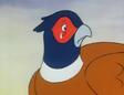 Mr. Pheasant 23