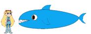 Star meets Bull Shark