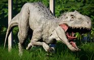 JWE Indominus Rex