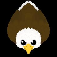 Mopeio Bald Eagle