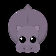 Mopeio Hippo