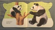 The Zoo Book (10)