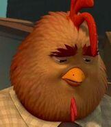 Buck-cluck-chicken-little-0 97
