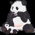 Celebritites-internet-cute-sneezing-panda