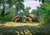 Galapagos-giant-tortoise-planet-zoo