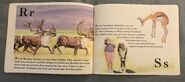 The Furry Animal Alphabet Book (11)