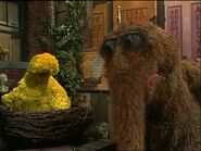 Big Bird napping in episode 2804