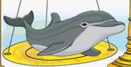 MSB Dolphin