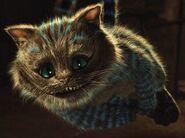 The Cheshire Cat (2010)