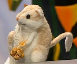 Cool the Kangaroo Rat