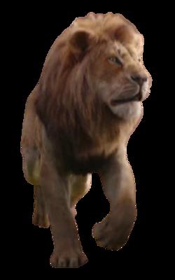 Simba (TLK2019).png