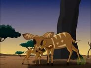 Bushbuck mother and child