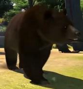 Cinnamon-bear-zootycoon3