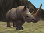 Zt2-whiterhinoceros