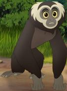 Gibbon TLG