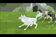Gray Wolf (Wild Kratts)