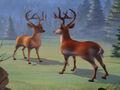 Jumpstart Deer