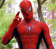 Spider-Man in Spider-Man 2 (2004)