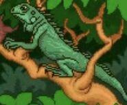 BTKB Iguana