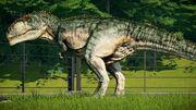 Giganotosaurus (V2).jpg