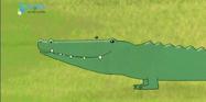 MMHM Crocodile