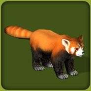 Red Panda (Blue Fang)