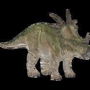 Styracosaurus WTJW