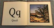 The New Alphabet of Animals (17)