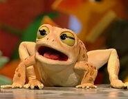 Big Old Toad